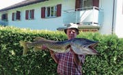 Fischereipräsident Burger mit seinem 121 Zentimeter langen Prachtfang. (Bild: PD)