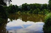 Erholungszone mitten in der Stadt: Dem Aachweiher werden nach den Sommerferien 4800 Kubikmeter Schwemmmaterial entnommen. (Bild: Max Eichenberger)