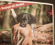 Ein Apportierhund soll Tierschützer motivieren, die Initiative zu unterschreiben. (Bild: wu)