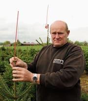 Bruno Straub bringt einen der Vogelstäbe an der Spitze des Tannenbaums an. Er kultiviert schon seit 1991 auf 20 Hektaren Christbäume. (Bilder: Urs Oskar Keller)