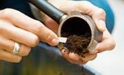 Wer hätte das gedacht: Nicht nur als Gartendünger ist Kaffeesatz geeignet, sondern auch als Energiequelle. (Bild: Getty)
