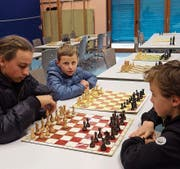 Schachmatt am See (Bild: Judith Meyer)