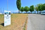 Der Arboner Hafendamm: Eine Arbeietsgruppe soll jetzt ein Nutzungskonzept vorlegen. Die Initianten eines Gastro-Betriebs haben ihr Projekt zurückgezogen. (Bild: Max Eichenberger)