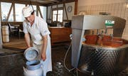 Aus Milch wird Käse: Der langjährige Mitarbeiter und Käsermeister Hansruedi Schläpfer zeigt's vor. (Bild: Nana do Carmo)