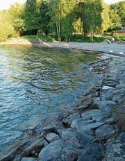 Die Aufnahmen des Seeufers am Hörnlibuck (links Juni 2017, rechts März 2018) zeigen deutlich, wie stark sich der Pegelstand des Bodensees je nach Jahreszeit verändert. (Bilder: Andreas Walker)