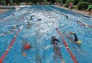 25 Stunden Zeit, um 38 Kilometer zu schwimmen (Bild: Robert Kucera)