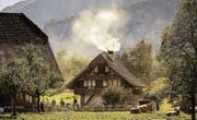 Blick in die Blueme-Trögli der Schweiz auf dem Ballenberg. (Bild: Ben Zurbriggen (14. September 2014))