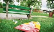 Der Kübel ist nur ein paar Schritte entfernt und trotzdem bleiben Dosen und Chipspackungen im Frauenfelder Lindenpark auf der Wiese liegen. (Bild: Andrea Stalder)