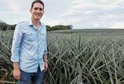 Michael Dähler betreut die Finanzen der Ananasplantage. (Bild: Yvonne Aldrovandi)