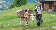Nach ihrem Zwischenstop in Wattwil geht für Muni Léo und Gaëtan Dübler die Reise nach Rorschach weiter. (Bilder: Dominic Engler)
