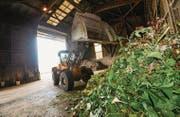 An der Grüngut-Sammelstelle der Axpo Kompogas AG ist ein Schaufellader im Einsatz. (Bild: Donato Caspari)