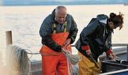 Berufsfischer Erwin Fischer mit Tochter Claudia Hug bei der Arbeit. (Archivbild: Reto Martin)