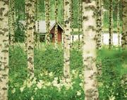 Sieht man oft in Finnland: eine Saunahütte in einem Birkenwald, in der Nähe ein See. (Bild: Fotolia)