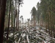 Sturm Burglind verursachte beträchtliche Schäden im Gamser Wald. (Bild: PD)