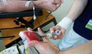 Lebenswichtiger «Rohstoff»: Eine Mitarbeiterin des Blutspendedienstes nimmt einem Spender das Blut ab. (Bild: Archiv Tagblatt)