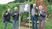 Gemeinderat Valentin Hasler, Hubertus Schmid, Hansruedi Wolfer und Doris Naef stossen auf die neue Weinweg-Tafel an. (Bild: Mario Testa)