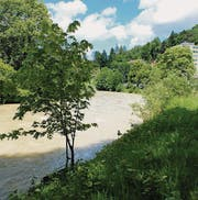 Ab Ende Juni werden Vorabklärungen für die Sanierung der Thur bei Wattwil vorgenommen. (Bild: Serge Hediger)