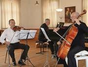 Leidenschaft und Dynamik: David Sonder, Philipp Horsch und Otto Horsch (von links). (Bild: pd)