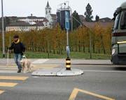 Guido Böhler überquert mit seinem Blindenführhund Benley den Fussgängerstreifen auf der St. Gallerstrasse. (Bild: Ursula Ammann)