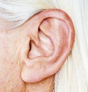 Nicht nur optisch von Bedeutung: die verschiedenen Formen des Ohres. (Bilder: Getty)