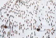 538 177 Personen haben bisher am Engadiner teilgenommen. (Bild: Arno Balzarini/KEY)