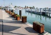 Blick auf das Romanshorner Hafenbecken, wo der Rollstuhlfahrer in den See fiel. (Bild: Archiv/Reto Martin (Symbolbild))