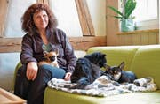 Brigitte Lang mit ihren Chihuahuas in der Stube ihrer Übergangs-Wohnung. (Bild: Mario Testa)