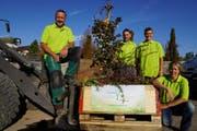 Markus Wagner, Marco Gähler, Mike Frischknecht und Esther Nufer (von links) mit einer bepflanzten Kiste. (Bild: pd)