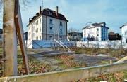 Neuer Anlauf beim Bündnerhof: Die geschützte Platane bleibt beim neuen Überbauungsprojekt unangetastet. (Bild: Max Eichenberger)