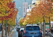 Der Herbst und seine vergängliche Schönheit (Bild: Heini Schwendener)