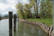 Der Alte Rhein fällt neu in den Zuständigkeitsbereich des Kantons St.Gallen. (Bild: Ralph Ribi)