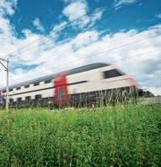 Ein Zug unterwegs bei Frauenfeld. (Bild: Andrea Stalder)
