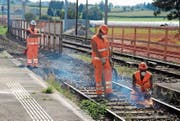 Ein Spaten für harte Kerle: Drei Arbeiter entfernen am Bahnhof Neukirch-Egnach das alte Gleis. (Bilder: Christof Lampart)
