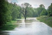 Den Flüssen soll mehr Raum gegeben werden: Thur-Hochwasser bei Uesslingen. (Bild: Reto Martin (14. Mai 2016))