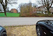 Neue Hotel-Parkplätze im Seegarten (Bild: Max Eichenberger)