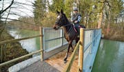 Susanne Germann reitet mit Molly über die neue Brücke. Sie verbindet etwa 100 Meter vor dem Elektrizitätswerk Wyden die beiden Seiten des Industriekanals. (Bild: Mario Testa)