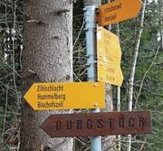 Die Wandernacht führt die Teilnehmer zum Burgstock. (Bild: pd/Roger Häni)