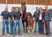 Die OK-Mitglieder Simon Haag, Richard Schneider und Präsident Urs Schneider freuen sich mit Züchter Daniel Schmid, Natalie Gmür, und Sponsorenvertreter Christian Sutter über das Fohlen Limanus. (Bild: pd)
