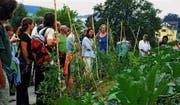 Mieke Duveen (Mitte) zeigt den Besucherinnen und Besuchern den üppigen Garten des Ökodorfs. (Bild: mhu)