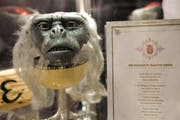 Ausstellungsstück im Thurgauer Museum für Archäologie. (Bild: Donato Caspari)