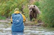 Für ein gutes Foto wagt sich Roman Schmid nah an den Bären heran. (Bild: PD)