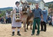 Die Kuh Silke von Christian Hardegger überzeugte und wurde «Miss Gams 2016». (Bilder: Corinne Hanselmann)