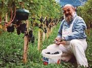 Franz Bieri (12.09.1946–07.08.2016) an seinem Lieblingsort inmitten der Reben. (Bild: PD)