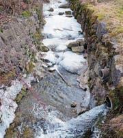 Aus Wasser wird dank der grossen Kälte schnell Eis: Der Grabserbach (oben) und der Studnerbach. (Bilder: Walter Roggensinger)