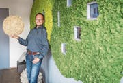 Patrick Hangartner ist Geschäftsführer der Frauenfelder Raumwerke AG. Er lehnt an einer grossen Wanddekoration aus Island-Moos. In der Hand hält er einen Ball aus amerikanischem Curly-Moos. (Bild: Reto Martin)