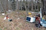 Illegal entsorgt: Unter anderem eine Mikrowelle, ein Toaster und Hanteln lagen anfangs Woche im Eschliker Wald Stockenholz. (Bild: Christoph Heer)
