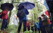Bei Dauerregen machten sich die ersten Wanderer bei der Eröffnung auf den Geoweg. (Bild: Rudolf Steiner)