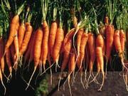 Rüebli sind in der Schweiz hoch im Kurs: 7,9 Kilogramm werden jährlich pro Kopf gegessen. An zweiter Stelle der Gemüse-Hitparade folgen Tomaten. (Symbolbild) (Bild: KEYSTONE/CHRISTOF SCHUERPF)
