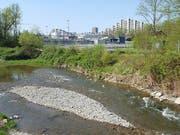 Schutz für das Laichgebiet der Fischart Nase an der Suhre am Rande des Industriequartiers mit Abwasserkläranlage in Aarau. Es ist verboten, den Bach und dessen Ufer zu betreten. (Bild: Thomas Gerber/sda)