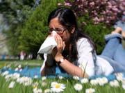 """Durch ihre Einträge in ein """"Allergietagebuch"""" können Allergiker selber zur schweizweit grösste Studie zu Pollenallergien beitragen. (Bild: Keystone/DPA/BODO MARKS)"""